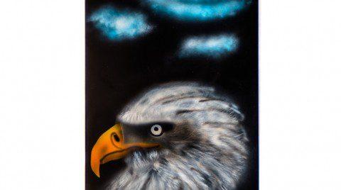 Airbrush Weisskopfseeadler